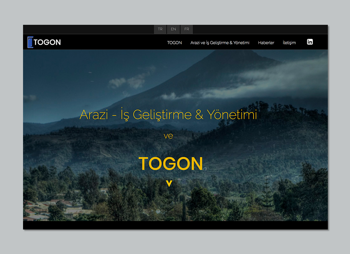 Togon Multilingual Website Design