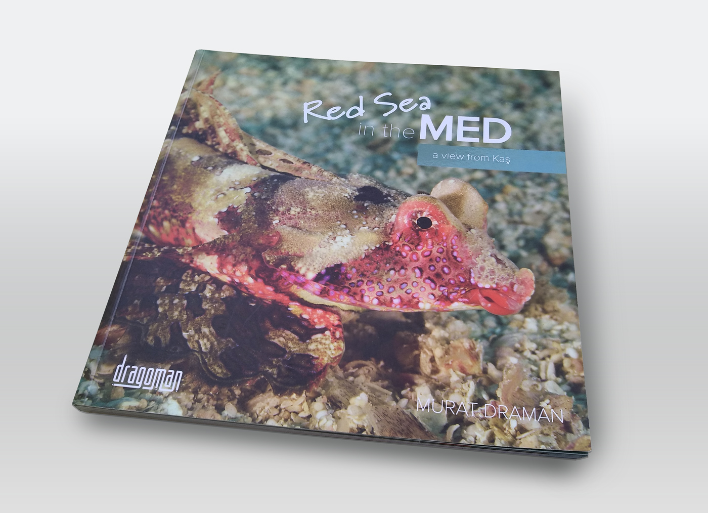Redsea in the Med Book Design