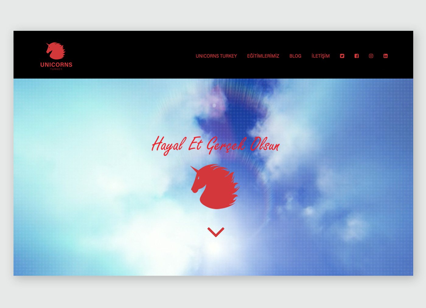 Unicorns Turkey Website Design